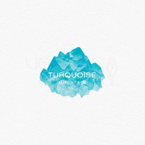 turquoise mountain logo white