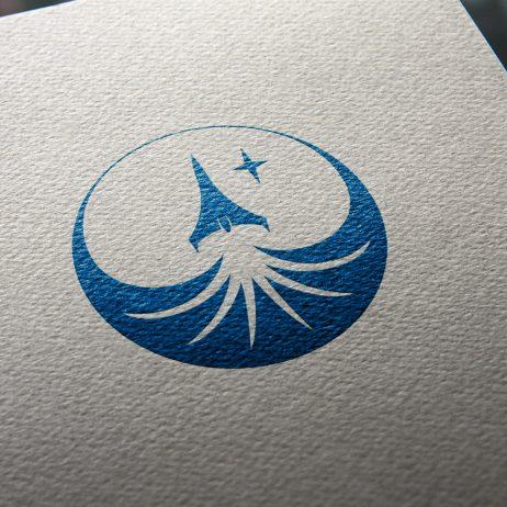 aerospace project emblem business card mock-up