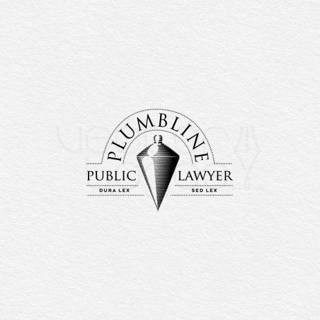 public lawyer logo