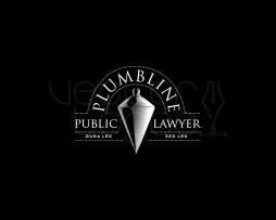 public lawyer logo invert